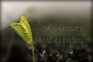 love_is_everywhere_and_in_everything__by_penni2-d5qdhm8.jpg